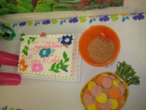 Cake and yummy desserts