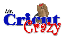 Mr. Cricut Crazy Stamp Winner