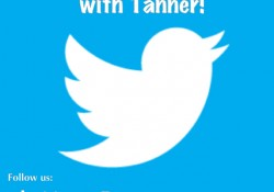 How to get more twitter followers how to twitter