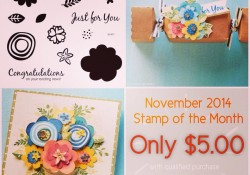 November Stamp Set Layer Flowers Cards Scrapbooking DIY