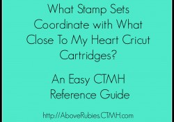 What CTMH Stamp Sets Coordinate with What Cricut Cartridges?